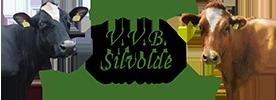 VVB Silvolde Logo